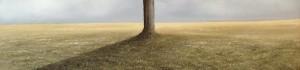 Bare tree copy 2